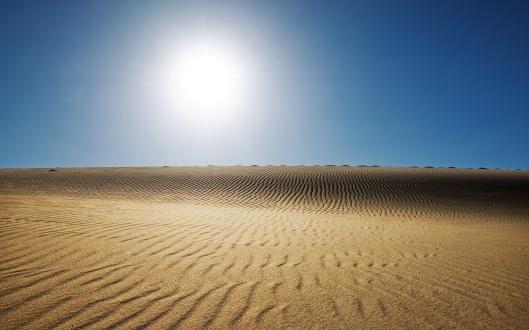desert_dune-wide