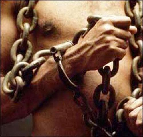 schiavo2