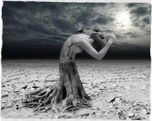 donna albero2