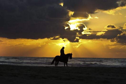 Palestinian rides horse at beach