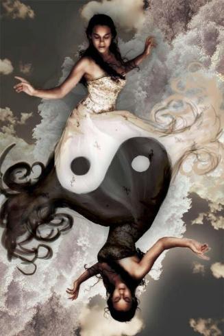 yin yang4