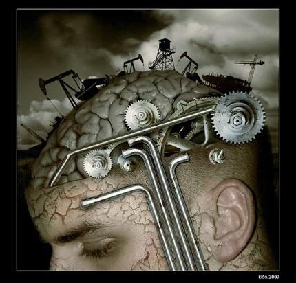 cervello21 (2)