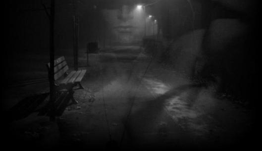 nebbia11