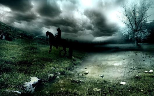 cavallo1