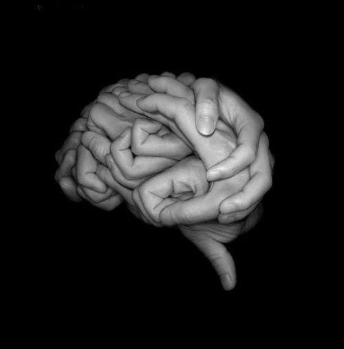 cervello22jpg