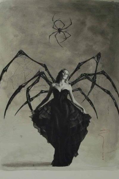 donna ragno1