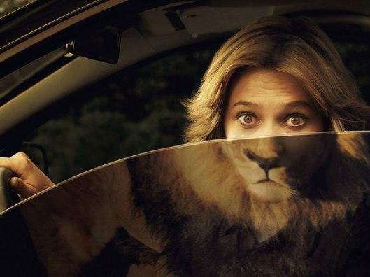 donna leone.jpg