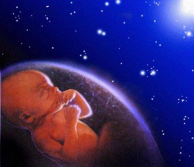 feto-universo