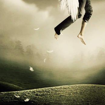 volare.jpg