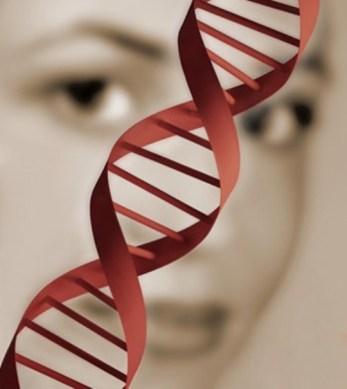 genetica2.jpg