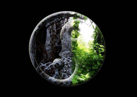yin yang2.jpg