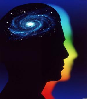 cervello universo